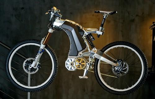 Mountain Bike M55