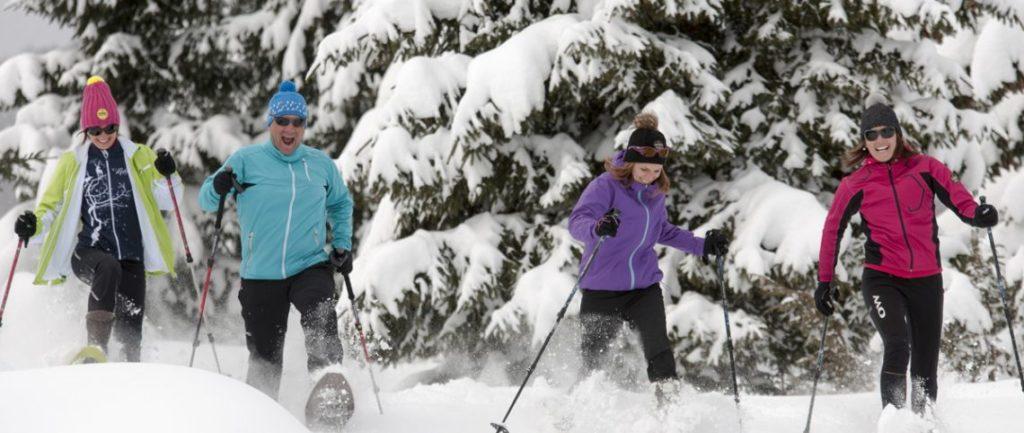 Raquettes à neige Équipement, meilleure saison, meilleurs endroits