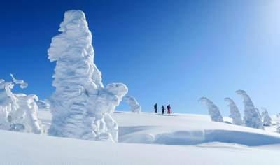 Profitez d'une poudreuse profonde et de qualité tout l'hiver à Hokkaido, au Japon.