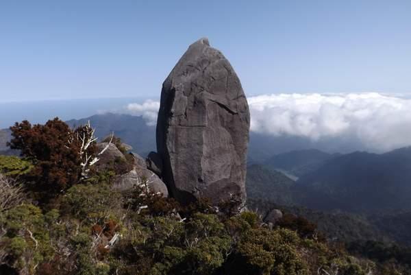 Yakushima Du haut du Mt Tachu